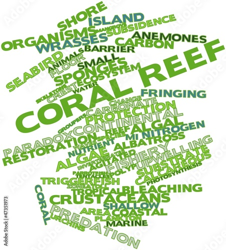 Word cloud for Coral reef