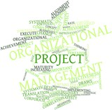Word cloud for Organizational project management