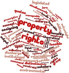Word cloud for Property rights