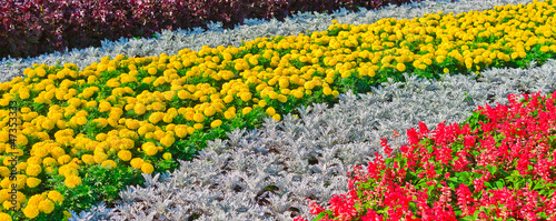 Decorative flower bed