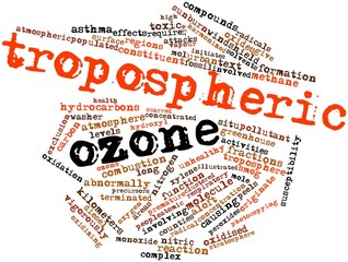 Word cloud for Tropospheric ozone