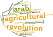 Word cloud for Arab Agricultural Revolution