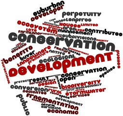 Word cloud for Conservation development