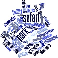 Word cloud for Safari park