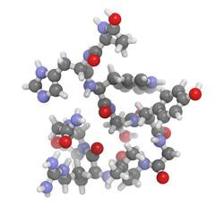 Gonadotropin-releasing hormone (GnRH, Luteinizing-hormone-releas