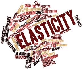 Word cloud for Elasticity