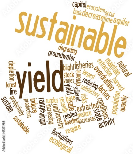 Word cloud for Sustainable yield