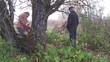 спиливает дерево