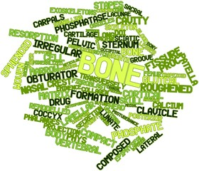 Word cloud for Bone