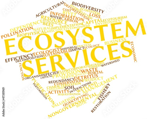 Word cloud for Ecosystem services