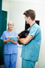 Veterinarian Doctor With A Dog Looking At Female Nurse Holding C