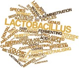Word cloud for Lactobacillus