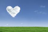 Love valentine day field poster