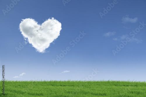 Love valentine day field