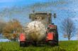 Traktor düngt mit Gülle ein Feld