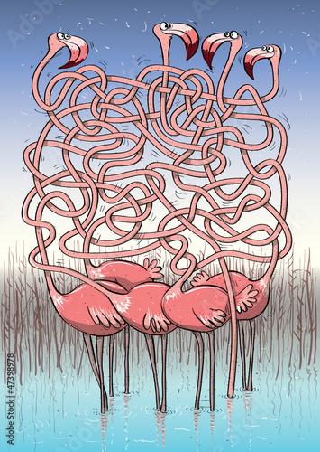 piec-flamingow-maze-game