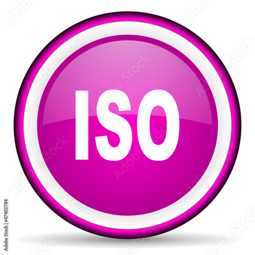 iso violet glossy icon on white background