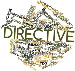 Word cloud for Directive