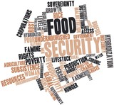 Word cloud for Food security