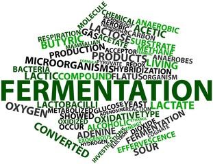 Word cloud for Fermentation