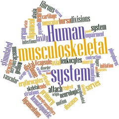 Word cloud for Human musculoskeletal system