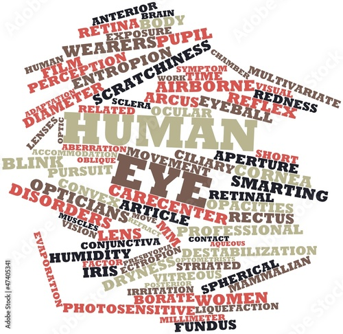 Word cloud for Human eye