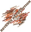 Word cloud for Revenue recognition