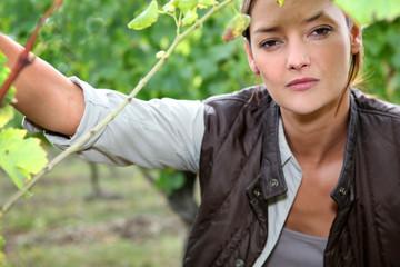Woman between vine leaves