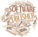 Word cloud for Software publisher
