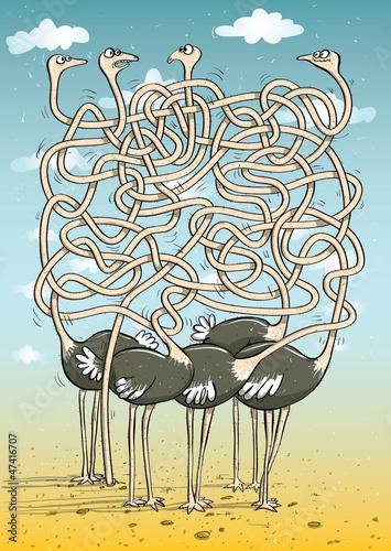 gra-osmiornice-maze