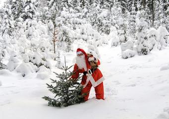 Weihnachtsmann im Winterwald