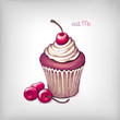 Vector hand drawn illustration of cupcake with cherry