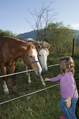 child and horses