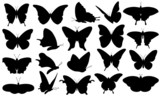 black butterfly set