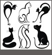 Black cat.Set of cats silhouettes in different poses
