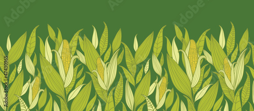 Vector corn plants horizontal seamless pattern ornament