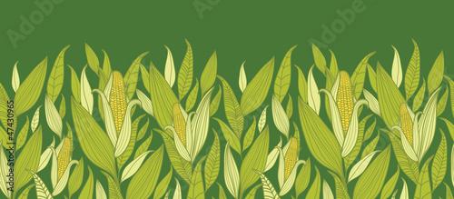 Vector corn plants horizontal seamless pattern ornament