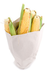 Corn on the cob in paper bag isolated on white