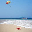 close up red starfish on beach and parachute in sky