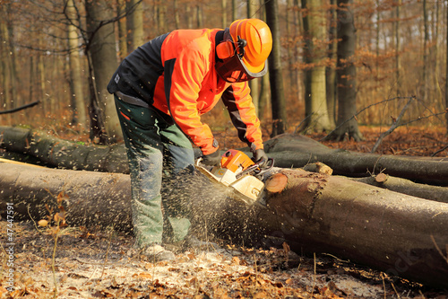 Leinwanddruck Bild Professionelle Forstarbeiten