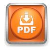 Download_PDF_Orange_Button