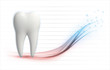 3d tooth health level vector template