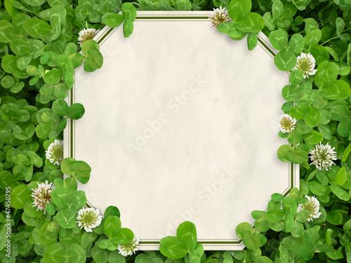 クローバーと白詰草の中のカード