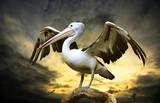 Fototapeta dziób - ptak - Ptak