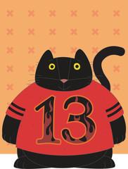Cat is 13