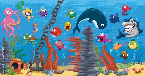 Aquarium with plenty of fish