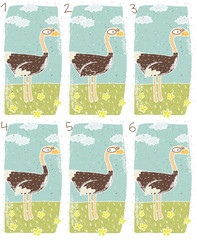 Ostrich Puzzle ... match the pair ... Answer: No. 1 and 6