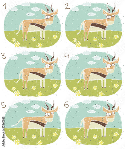 Antelope Puzzle ... match the pair ... Answer: No. 3 and 4