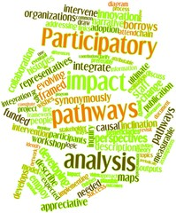 Word cloud for Participatory impact pathways analysis
