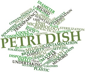 Word cloud for Petri dish